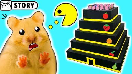 长毛小仓鼠闯关高塔,看它能否一举拿下