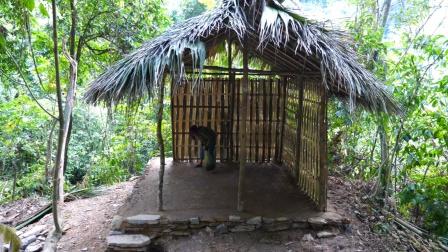 妹子独自一人丛林生存,搭建完美的豪华庇护所,网友:我也想去
