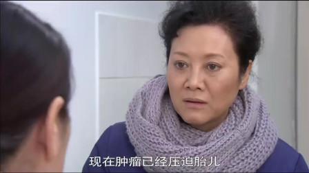 电视剧已经大结局了,才发现岳母才是个恋爱高手
