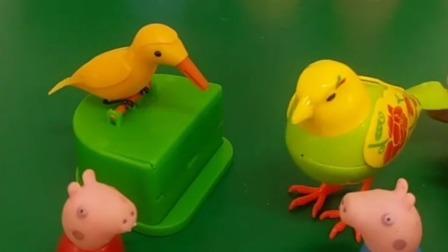 不一样的小鸟,不一样的功能,大家更喜欢谁的鸟呢