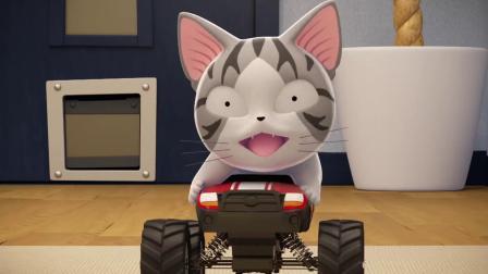 甜甜私房猫:小宝宝猫咪,真的很有趣哦!