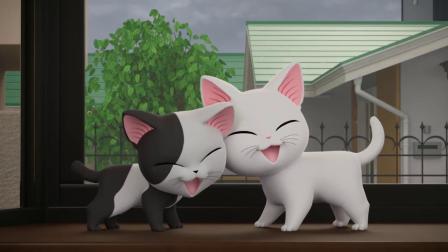 甜甜私房猫:猫咪好开心,好好玩哦!
