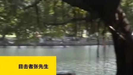 深圳两男子勇救跳湖女子后悄然离开,全网找人申报见义勇为