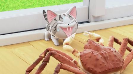 甜甜私房猫:不要吓唬小猫咪哦