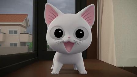 甜甜私房猫:小白白,你开心吗?哥哥来看你了