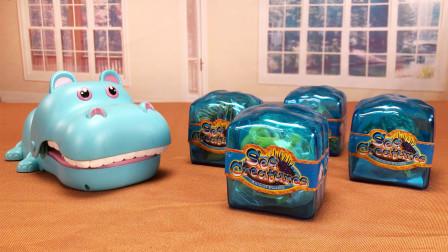 玩具柜子:河马小课堂 拆海洋动物奇趣蛋