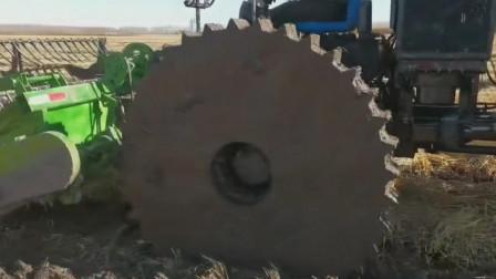 巨大齿轮盘车轮的收割机在淤泥中收割农作物