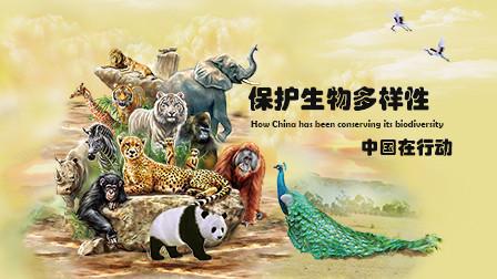 保护生物多样性 中国在行动