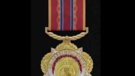 这枚纪念章,致敬英雄!
