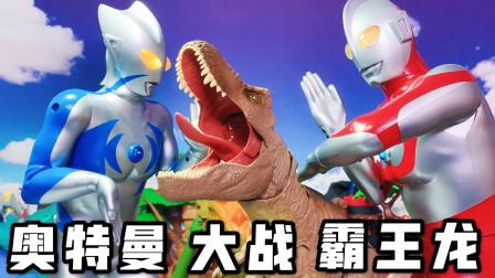 塞罗奥特曼大战霸王龙!侏罗纪世界公园恐龙暴虐龙儿童玩具开箱!