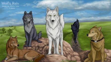 狼雨 WOLFS RAIN:不灭的高贵灵魂