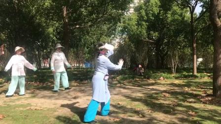 2020-10-23武当拳教学视频