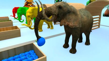 动物世界 给大象吃水果变颜色