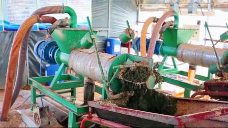 """粪里""""淘金""""!牛人发明粪便处理机,2吨鸡粪1小时加工成有机肥"""