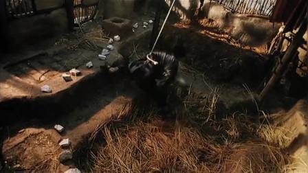 经典武侠动作片《断刀客》:冷兵器对决,生猛彪悍,刀刀致命