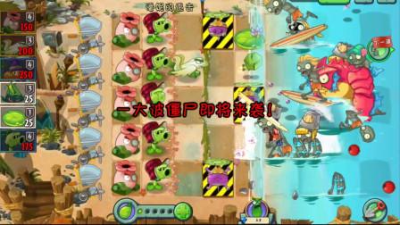 植物大战僵尸2:抛投植物变三格01天,潘妮的追击保护旋转芜菁!