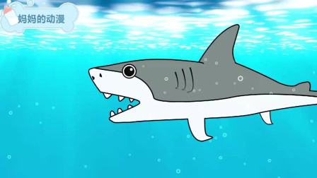 鲨鱼追赶乌龟魔鬼鱼和海豚 海洋动漫