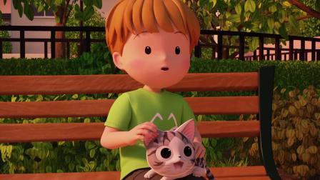 甜甜私房猫:小猫咪很乖哦!