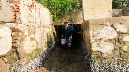 阿彬发现养殖场的排水洞,直接一头钻进去,没想到大货都躲在里面