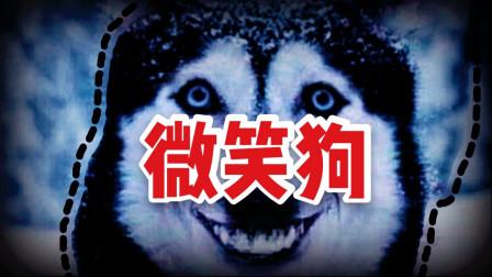 微笑狗的故事背后,到底是什么可怕的灵异故事?
