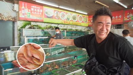 去中山!吃禾虫!很多人不敢吃,但也有很多人当它是绝世美味!