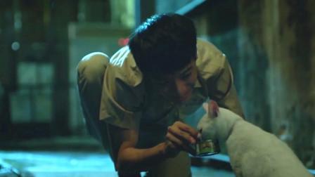 男孩被学习成绩逼疯,认为杀一只猫就可以换100分,成了虐猫狂魔