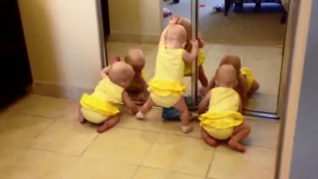 三胞胎照镜子,对着镜子里的自己,三个娃瞬间就嗨了起来太可爱了