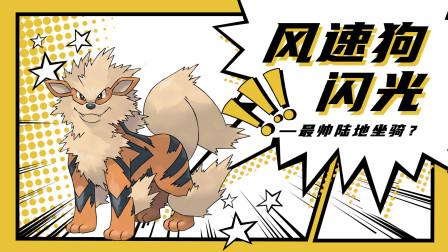 【朔丨蜀黍の刷闪集锦】精灵宝可梦卡蒂狗-风速狗 超帅坐骑