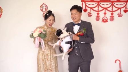 婚礼现场现爆笑一幕!宠物狗一脚踹开新娘向新郎要亲亲