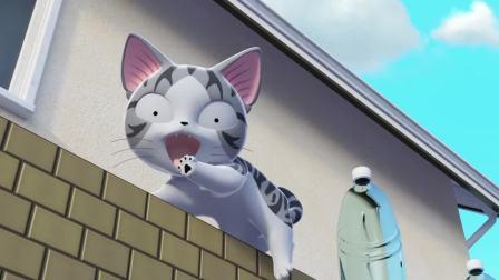 甜甜私房猫:小奇,你不要掉下去哦