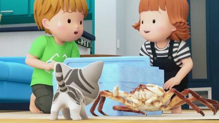 甜甜私房猫:哇,好萌的小猫咪!