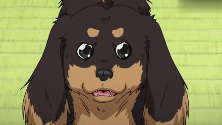 狗与剪刀的正确用法:又出来一个S女?狗后宫又多一人,然而是他想多了