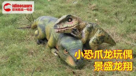 仿真小恐爪龙玩偶 - 定做的小恐龙道具模型