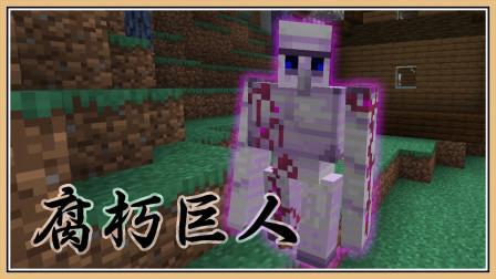 鬼鬼【我的世界】LV10 新手的梦魇BOSS【流亡麦块 #5】流浪召唤师