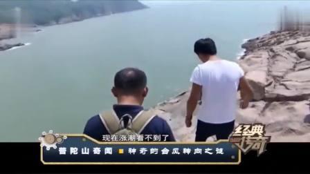 经典传奇:台风来临,水中惊现百米长蛇影,被人亲眼目睹