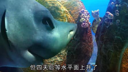 海底大冒险:小朋友真是可爱,还有小乌龟,就是有点吓人啊