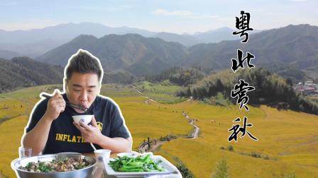 """如果你觉得珠三角没有""""秋天"""",不妨开车去粤北吧,不管是景色还是吃的,都很有秋天""""内味""""!"""