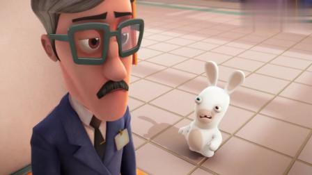 疯狂的兔子:我说兔子怎么敢招惹凶恶的狗,原来是团伙作案