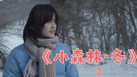 小森林冬中:这部绝美的日本电影,每年冬天都要看一遍