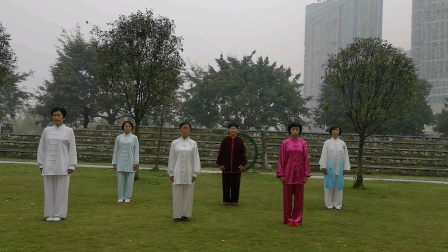 犍为县方舟太极队队员演练杨式二十四式太极拳