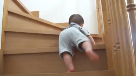 7个多月的小宝宝,展示如何完美爬楼梯,这身法也太厉害了吧!
