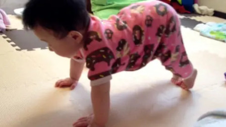 8个月的宝宝双手撑地,屁股向上一拱一拱的,你知道他在干嘛么?