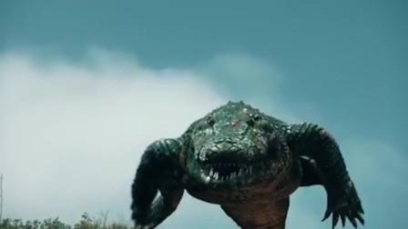 鳄鱼群能在岛上嚣张,那是因为没有遇到我贝爷!