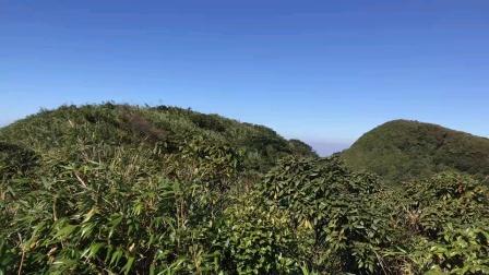 广西大明山龙头峰景色。黄家桉寻龙点穴