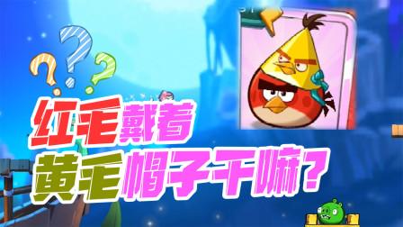 愤怒的小鸟:红毛戴着飞镖黄的帽子干嘛?难道是暗地里崇拜他?