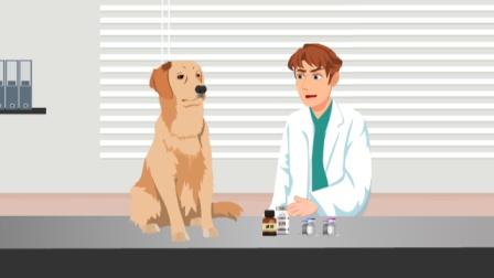 小区的狗真多,万一被伤该咋办?清创?打疫苗?预防狂犬病黑科技