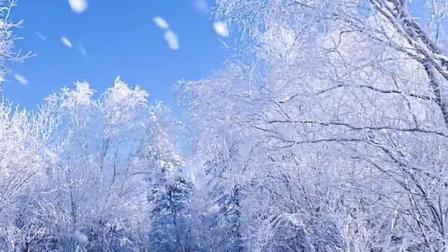 如果有人给你发下雪的视频,你一定要说我也很想你