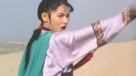 惠英红是有真功夫的,不仅武功了得,还会耍剑,太精彩了