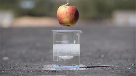 浓硫酸有多可怕?老外作死用苹果来实验,场面一度很失控!