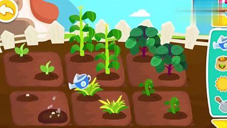 宝宝巴士:菜园里的小种子发芽了,得多给点太阳才能长高
